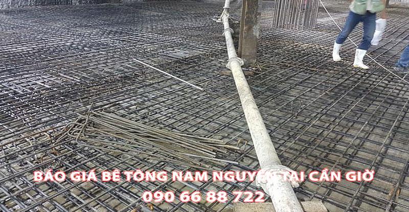 Bang-Gia-Be-Tong-Nam-Nguyen-Tai-Can-Gio-Moi-Nhat (3)