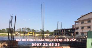 Bang-Gia-Be-Tong-Nam-Nguyen-Tai-Go-Vap-Moi-Nhat (1)