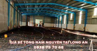 Bang-Gia-Be-Tong-Nam-Nguyen-Tai-Long-An-Moi-Nhat (3)