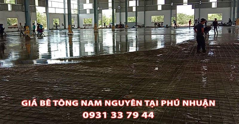 Bang-Gia-Be-Tong-Nam-Nguyen-Tai-Phu-Nhuan-Moi-Nhat (2)