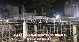 Bang-Gia-Be-Tong-Nam-Nguyen-Tai-Quan-1-Moi-Nhat (1)