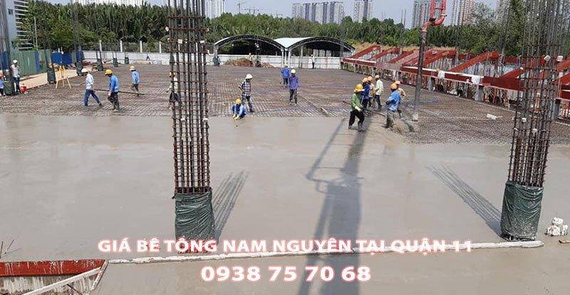Bang-Gia-Be-Tong-Nam-Nguyen-Tai-Quan-11 (1)
