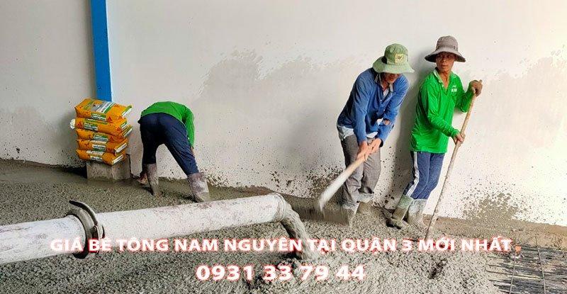 Bang-Gia-Be-Tong-Nam-Nguyen-Tai-Quan-3-Moi-Nhat (2)