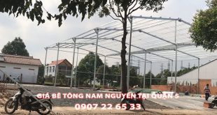 Bang-Gia-Be-Tong-Nam-Nguyen-Tai-Quan-5-Moi-Nhat (1)