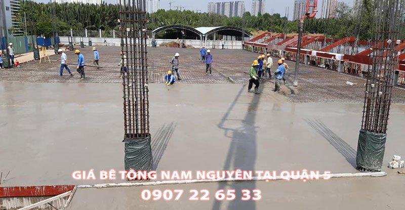 Bang-Gia-Be-Tong-Nam-Nguyen-Tai-Quan-5-Moi-Nhat (2)