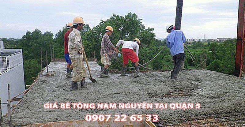 Bang-Gia-Be-Tong-Nam-Nguyen-Tai-Quan-5-Moi-Nhat (3)