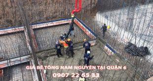Bang-Gia-Be-Tong-Nam-Nguyen-Tai-Quan-6 (1)