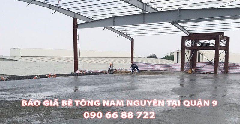 Bang-Gia-Be-Tong-Nam-Nguyen-Tai-Quan-9-Moi-Nhat (1)