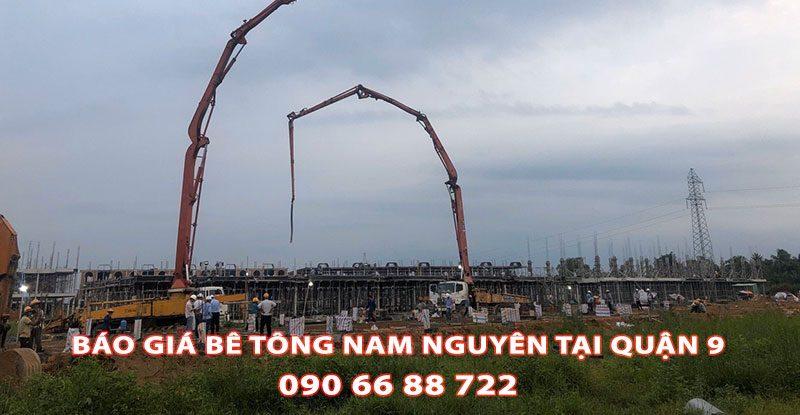 Bang-Gia-Be-Tong-Nam-Nguyen-Tai-Quan-9-Moi-Nhat (3)