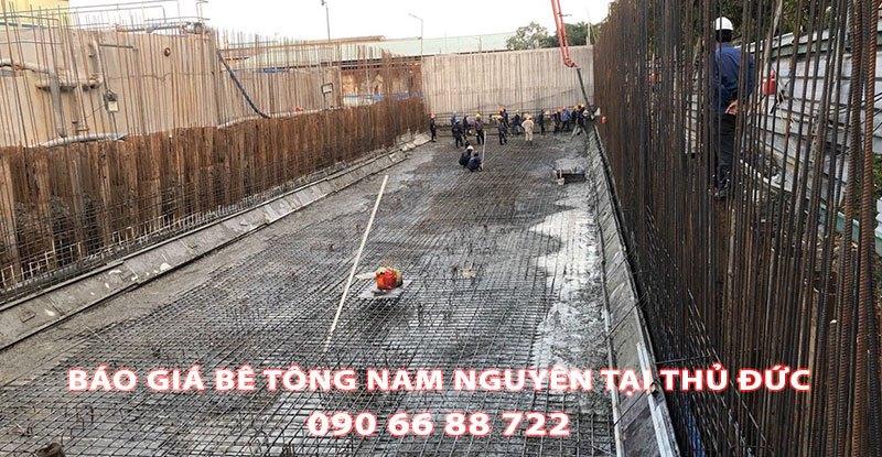 Bang-Gia-Be-Tong-Nam-Nguyen-Tai-Thu-Duc-Moi-Nhat (1)