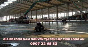 Bang-Gia-Be-Tong-Nam-Nguyen-Tai-Ben-Luc-Moi-Nhat (3)