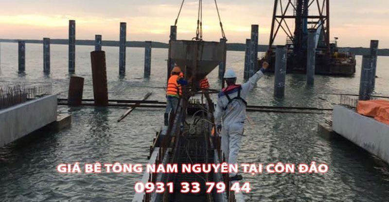 Bang-Gia-Be-Tong-Nam-Nguyen-Tai-Con-Dao-Moi-Nhat (3)