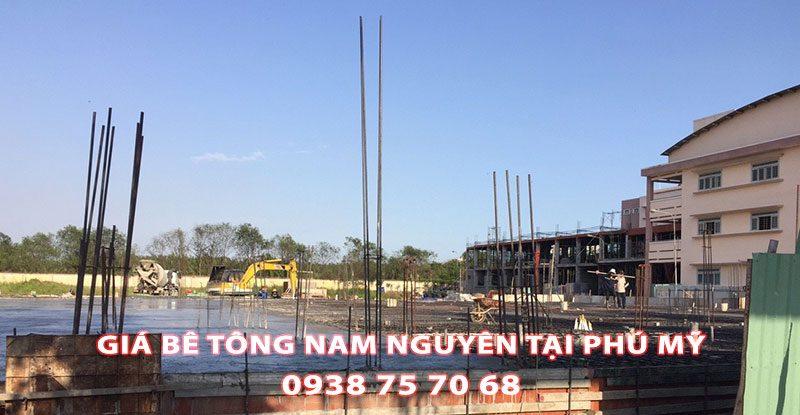 Bang-Gia-Be-Tong-Nam-Nguyen-Tai-Phu-My-Moi-Nhat (3)