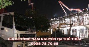 Bang-Gia-Be-Tong-Nam-Nguyen-Tai-Thu-Thua-Moi-Nhat (1)