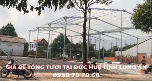 Bang-Gia-Be-Tong-Tuoi-Tai-Duc-Hue-Moi-Nhat (1)