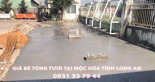 Bang-Gia-Be-Tong-Tuoi-Tai-Moc-Hoa-Long-An (1)